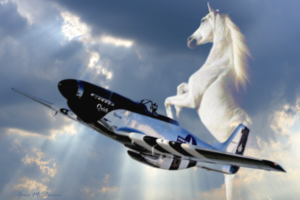 Scott Yoak P-51 Quick Silver